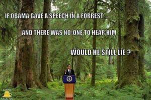 Obama Forest still Lie