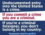 When you commit a crime you are a criminal Illegal aliens