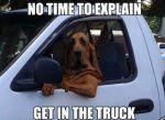 Dog No Time to Explain Get in the Truck