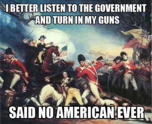 Listen to Govt turn in my guns said no american ever