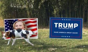 dog-peeing-on-hillary-yard-sign